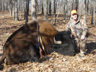 Rifle Buffalo Hunting at High Adventure Ranch